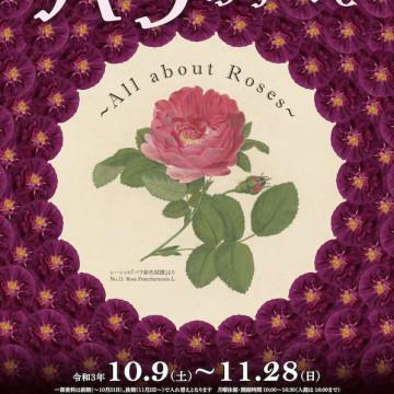 千葉県立中央博物館『令和3年度特別展 バラのすべて~All about Roses~』展示のご案内